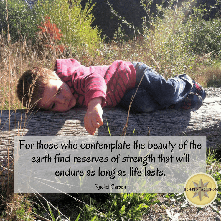 Those who contemplate the beauty of the earth find reserves of strength that will endure as long as life lasts. Posted at RootsOfAction.com