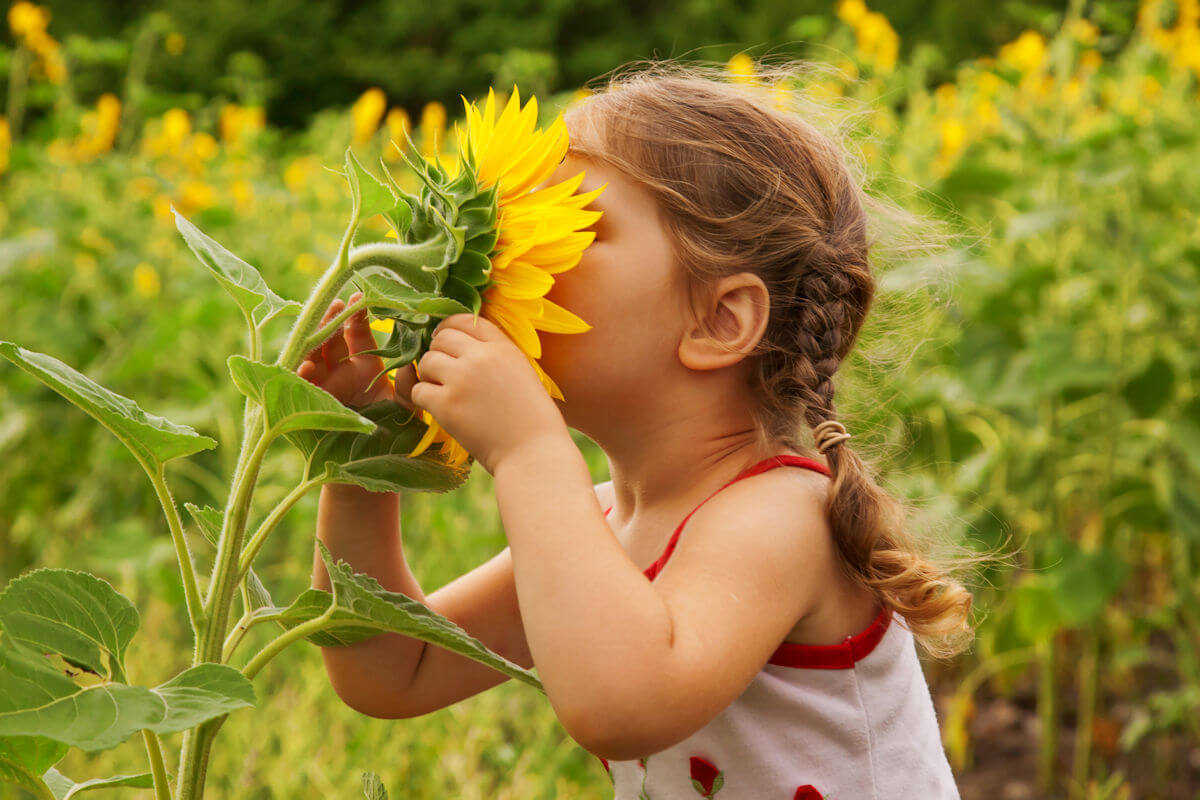 Benefits of Nature for Children and Families