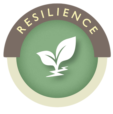 Resilience and Thriving